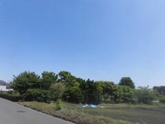 CIMG4357.jpg